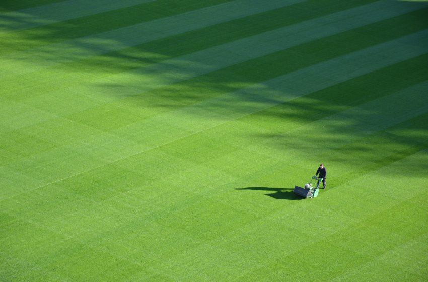 Man Continues to Water Lawn Despite No One Giving a Shit About Lawns Anymore