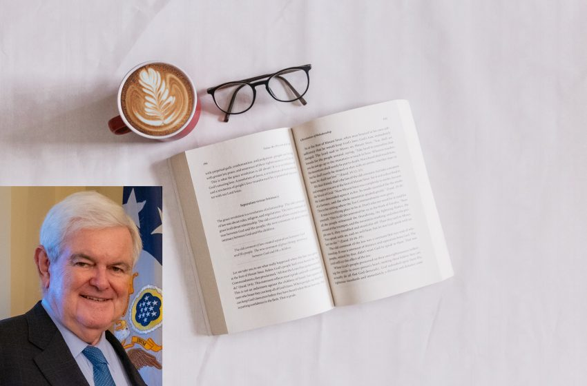 Newt Gingrich Announces New Book Coming Out this Fall, 'How To Cheat on all of Your Wives and Still Have the Full Support of Your White Evangelical Christian Base'