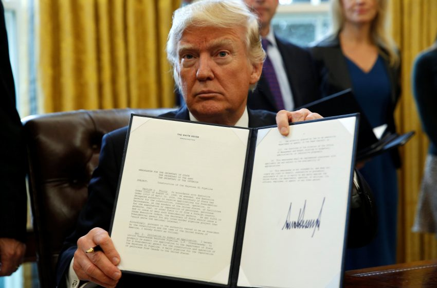 President Trump Signs Executive Order Saying Only Patriotic Americans With IQ's of 70 or Below Will Have Their Votes Count Towards the Upcoming Election
