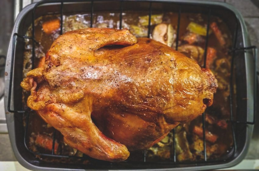 Man Enrages Elderly Conservative Family Members by Announcing They'll be Having Chicken Instead of Turkey on Thanksgiving