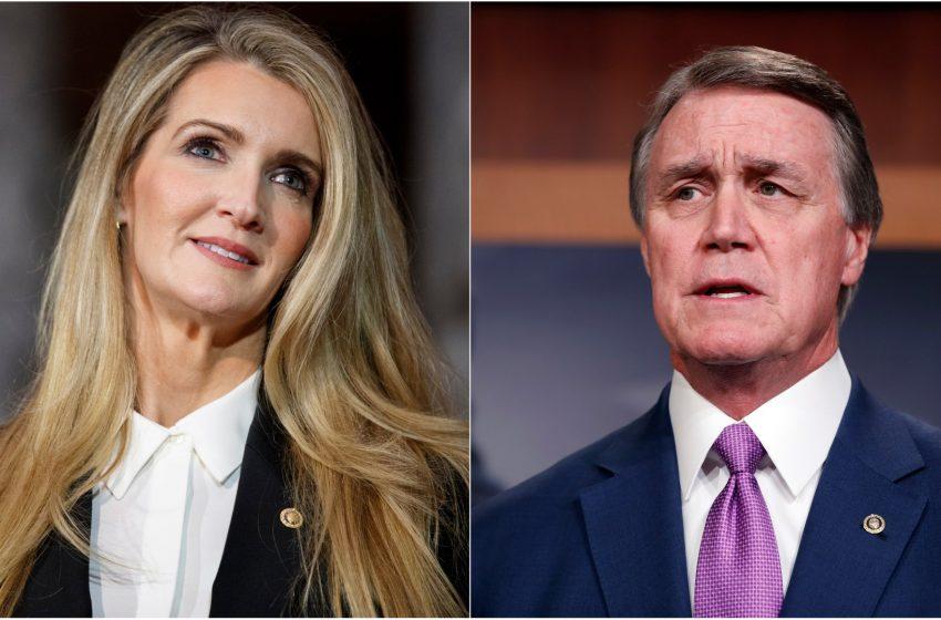 Senators David Perdue and Kelly Loeffler Show Up To Vote in Georgia Senate Runoff in Klan Outfits