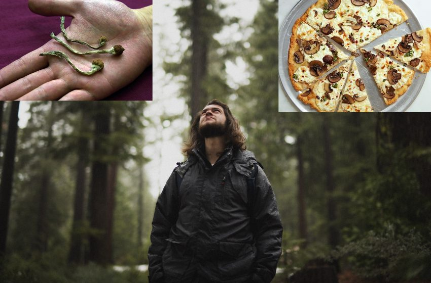 Guy Who Is Really Into Mushrooms On Pizza Mistaken For Guy Who Likes Tripping On Shrooms